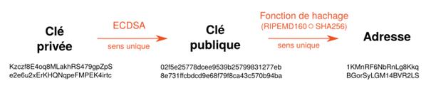 article bitcoin Dérivation de l'adresse Bitcoin à partir de la clé publique